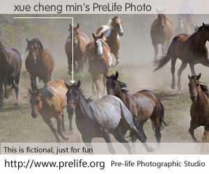 xue cheng min's PreLife Photo