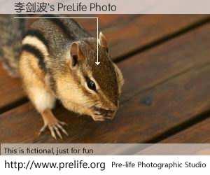 李剑波's PreLife Photo