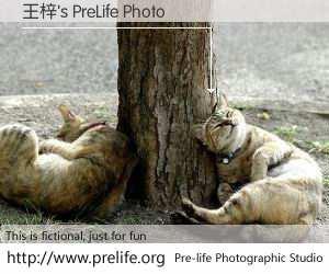 王梓's PreLife Photo