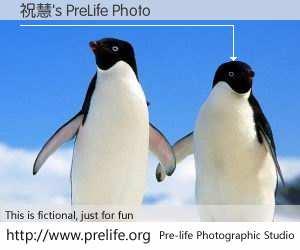 祝慧's PreLife Photo