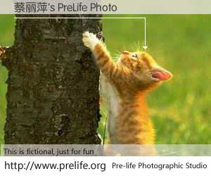 蔡丽萍's PreLife Photo