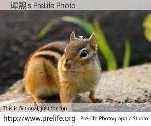 谭熙's PreLife Photo